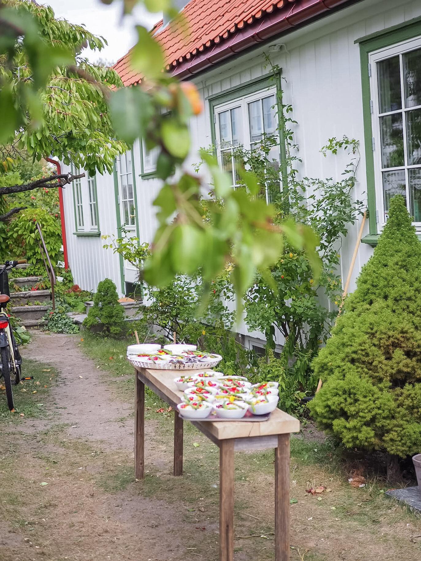 Besøk til Blomster-Finn og Årets farge 2019 - Nordsjø • HVITELINJER